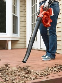 The Top 20 Best Cordless Leaf Blower